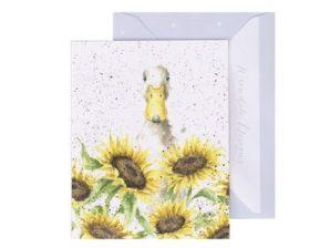Auringonpaiste-minikortti