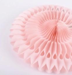 Paperikukka, vaaleanpunainen