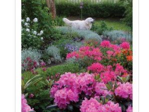 Kukkaiselämää-juliste