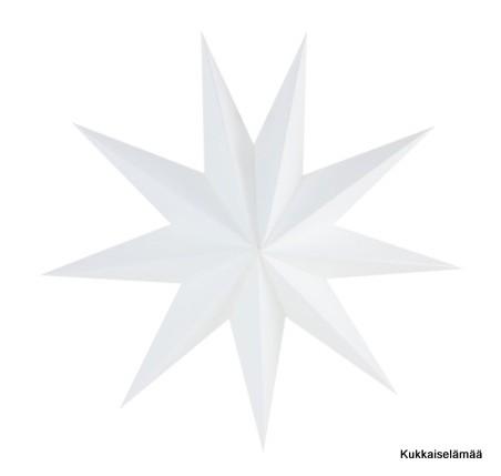 Paperitähti, valkoinen