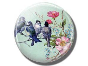 Magneetti, linnut