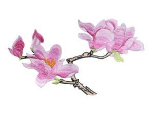 Applikointikuvio, magnolia, silitettävä