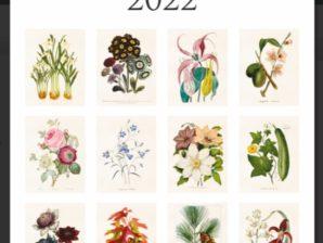 Seinäkalenteri 2022, Botanical, Sköna Ting
