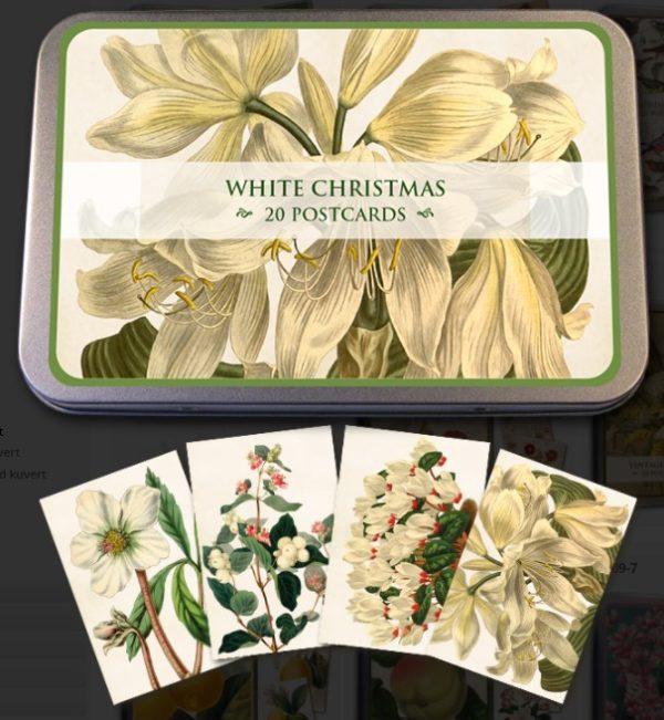 Joulukortit, Valkea joulu, peltirasiassa, 20 kpl, Sköna Ting